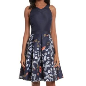 Ted Baker Bethah Kyoto Fit & Flare Dress NEW